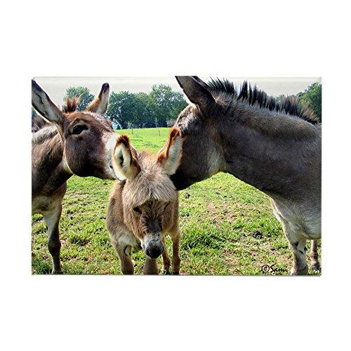 CafePress Miniature Donkey Family Rectangle Magnet Rectangle Magnet, 2