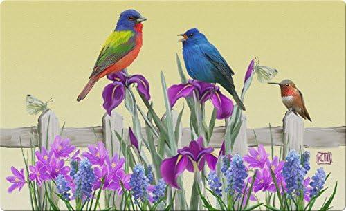 Toland Home Garden Birds n Butterflies 18 x 30 Inch Decorative Spring Bird Floor Mat Flower Doormat