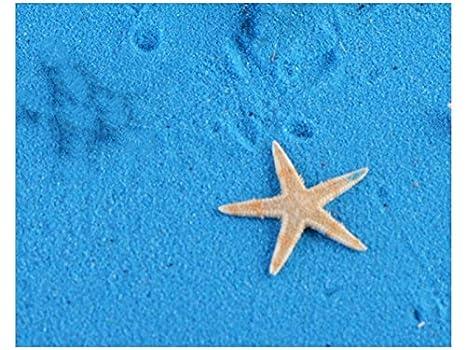 Linda Micro Paisaje Resina Estrella de Mar Artificial Adornos para el hogar Jardín Acuario Decoración de Bricolaje (Amarillo Claro) Pequeños Ornamentos: ...