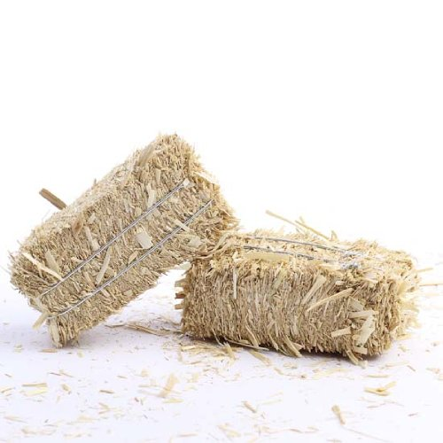 Package of 6 Ultra Mini Hay Bales Made of Real Dried Straw for Crafting, Embellishing and Creating (Mini Hay Bales)