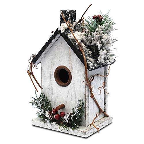 - Later M nl01 Winter+Christmas Bird Houses Decor (9.5 in) A Unique Beauty, W, White