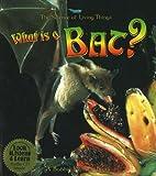 What Is a Bat?, Heather Levigne and Bobbie Kalman, 0778776433