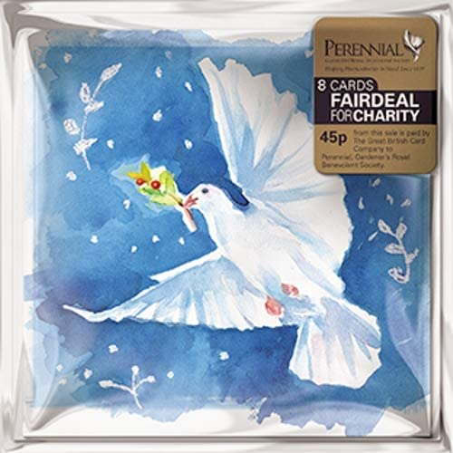 Pack of 8 Christmas Dove Perennial Charity Christmas Cards Mini Packs: Amazon.es: Oficina y papelería