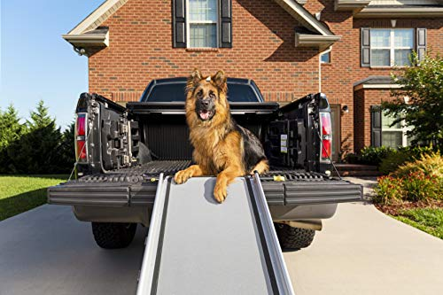 PetSafe Solvit Deluxe Extra-Long Telescoping Pet Ramp, Longer Length Dog Ramp for Steep Inclines