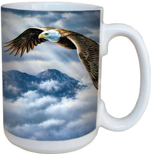 Tree-Free Greetings 79047 Eagle Spirit Collectible Art Ceramic Mug with Full Sized Handle, 15-Ounce, Multicolored