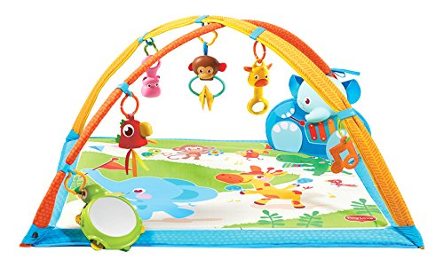 Tiny Love Gymini My Musical Friends Play - Play Activity Arch Shopping Results