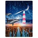 Blanket 50''x80'' Sofa Bed Throw Lightweight Plush Funny Dolphin Sky Lighthouse Meteor Moon Stakes