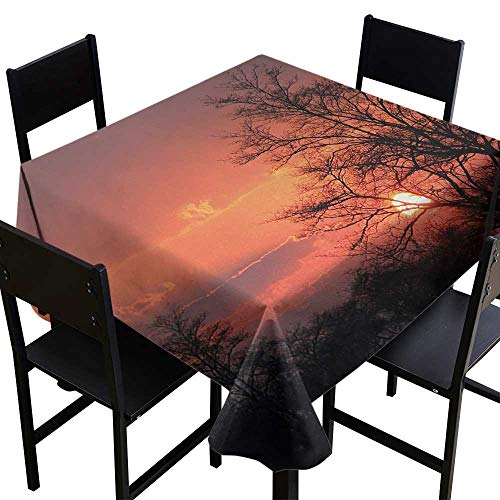 (Glifporia White Square Tablecloth African,Sunset Kwando River Caprivi Strip Namibia Evening Wilderness National Park,Coral Orange Black,W50 x L50 for Holiday)