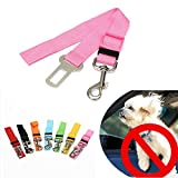 Generic Dog Harness For Cars - Best Reviews Guide