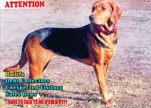 Estonian Garden - Attention - Beware / Fun Sign Dog Estonian Hound Dog for your home or house SF1408 Size A4