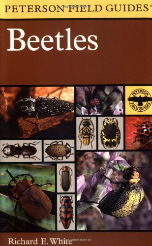 Beetles: A Field Guide to the Beetles of North America - Book #29 of the Peterson Field Guides