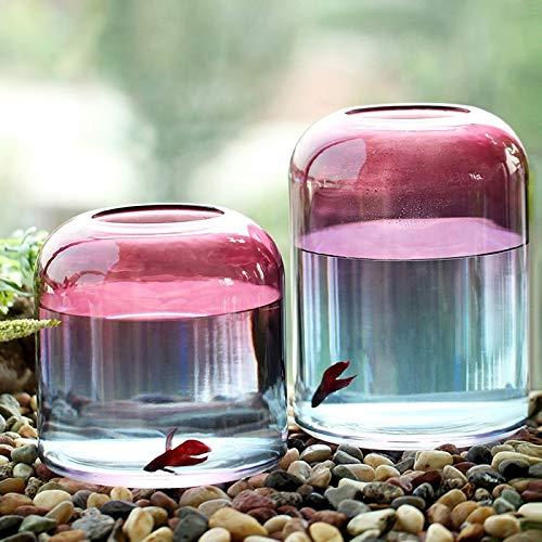 HBJP ガラス花瓶水耕植物花瓶リビングルームデスクトップ装飾容器2ピース包装 花瓶 B07SH3SBW8