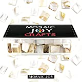 Mosaic Tiles Mother of Pearl Mosaic Supplies for Crafts Mosaic Pieces For DIY Crafts 240 Pieces/ 1Pound by Moasic Joy