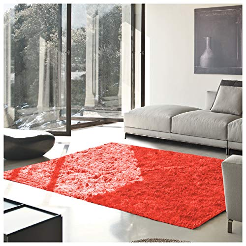 Superior Textured Shag Area Rug, Spiced Coral, 5' x 8' (Coral Colored Rugs)