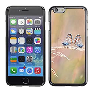 SKCASE Center / Funda Carcasa - Mariposa - Apple Iphone 6 Plus 5.5