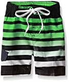 Kanu Surf Little Boys' Toddler Reflection Stripe Swim Trunk, Black/Green, 4T