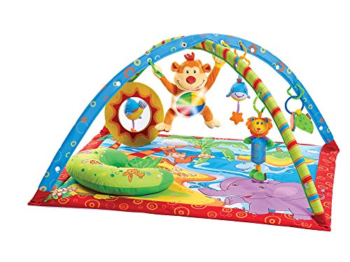 Tiny Love Gymini Monkey Island Activity Gym by Tiny Love