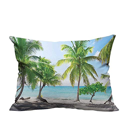 Catalina Spa Pillow - YouXianHome Sofa Waist Cushion Cover Beach Palm Leaves and Catalina Island Seashore Coastal Panoramic Picture Accessories Decorative for Kids Adults(Double-Sided Printing) 11x19.5 inch