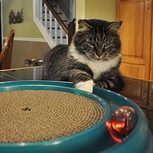 Bergan Cat Scratcher Toy and Cat Scratcher Refill (2-Pack), Cat Kitten Toy Interactive Bundle