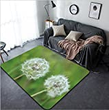Vanfan Design Home Decorative 636126386 Dandelion Seeds Modern Non-Slip Doormats Carpet for Living Dining Room Bedroom Hallway Office Easy Clean Footcloth