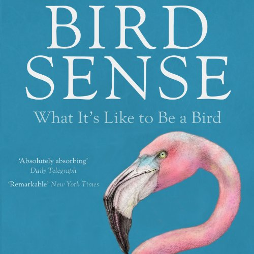 Bird Sense: What It's Like to Be a Bird cover