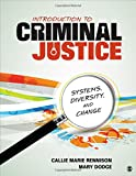 Introduction to Criminal Justice 1st Edition