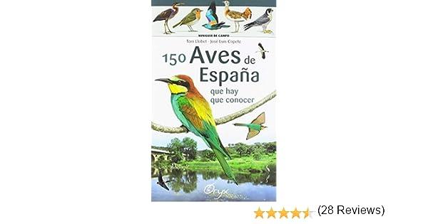 150 aves de España que hay de conocer: que hay que conocer ...