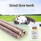 Wakeu Cat Catnip Sticks,5PCS Pet Cat Kitten Chew Stick Toy Catnip Molar
