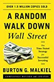 img - for A Random Walk down Wall Street: The Time-tested Strategy for Successful Investing book / textbook / text book