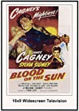 Blood On The Sun Widescreen Television