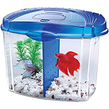 Aqueon aquarium betta bow 2 5 gallon acrylic for Betta fish tanks amazon