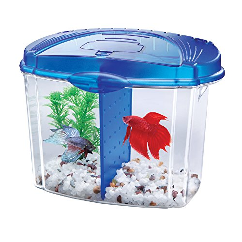 Aqueon Betta Fish Tank Starter Kit, Half Gallon, Blue ()