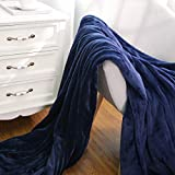 MaxKare Large Electric Heated Blanket Adjustable