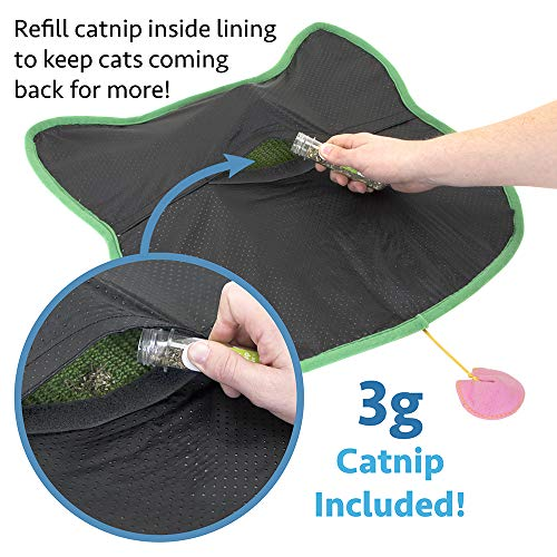 Sisal Rug Got Wet: Kitty City Premium Woven Sisal Carpet Scratching