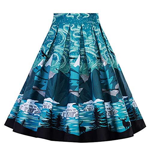 (Women A-Line Floral High Waist Printed Pleated Flared Dress Short Skirt Blue)