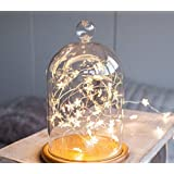 Shining Decors Star Copper Wire String Lights Led Fairy Decoration Lights