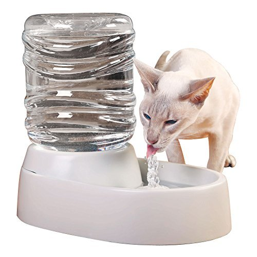 Etna Electronic Pet Water Fountain by Etna