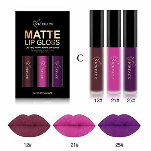 Multi Gloss Lip Kit (Victorcn 3PCS New Fashion Waterproof Matte Liquid Lipstick Cosmetic Sexy Lip Gloss Kit (G))