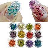 utda.sh-fs women's nails 12 Colors 3D Decoration