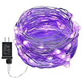 ITART Purple Fairy Lights,33Ft 100 LED Outdoor and Indoor String Lights Waterproof Ultra Thin Silver Wire with Power Adapter UL for Christmas Patio Wedding Party Bedroom DIY Decoration-Purple