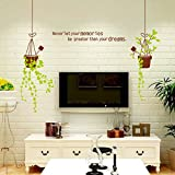 Mr.S Shop Flower Pot Wall Sticker Arrvied Hot Sell Decoration Living Kitchen Room Vinyl Wall Stickers offers