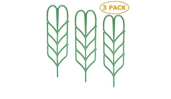 TADAE Paquete de 3 Enrejado de jardín Plástico Planta de Interior ...