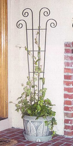 flower pot trellis - 9