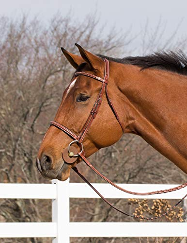 Horze Harrison Leather English Show Bridle Padded Brow Caveson Reins (Full/Horse) Sale