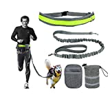 Aidle Running/Jogging/Walking Hands Free Pet Puppy Dog Leash with Pouch/Waist Bags, Reflective Waist Belt, Elastic Leash (Gray)