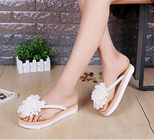 Student Femmes Han Summer Thirty Appartement seven Attelle De Banchao Khskx Bel Fleur la Fashion Tongs Ygpp184q