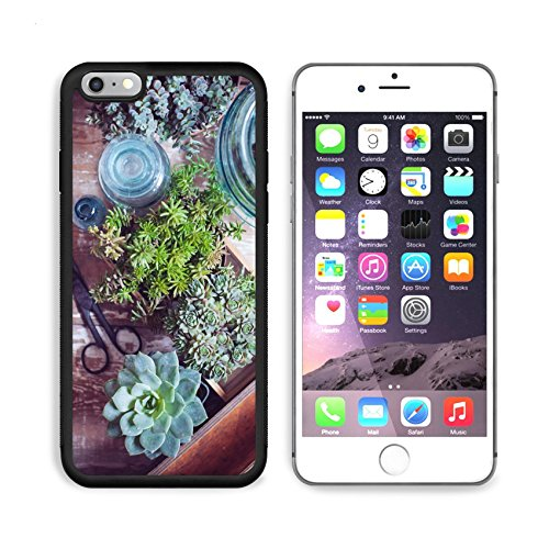 (MSD Premium Apple iPhone 6 Plus iPhone 6S Plus Aluminum Backplate Bumper Snap Case House plants green succulents old wooden box and blue vintage glass bottles on a wooden board home gardening and deco)