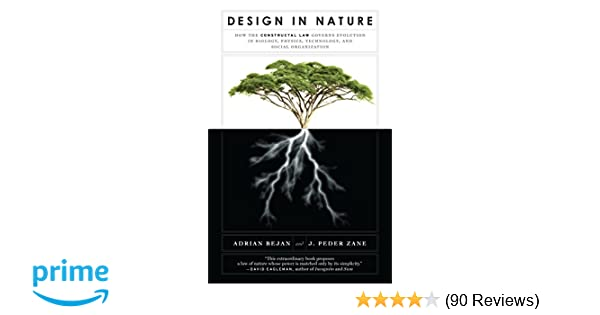 Design in Nature: How the Constructal Law Governs Evolution