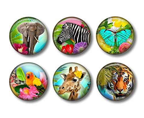 Colorful Animal Magnets - 6 Piece Set - 1.5 Inch Round - Elephant, Zebra, Butterfly, Giraffe, Tropical, Safari - Cute for Kitchen, Locker, - Safari Magnet