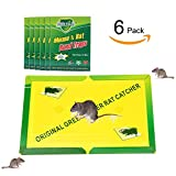 Best Mice/Rat Glue Trap, willway Easy Use Sticky Mouse Trap Glue Boards